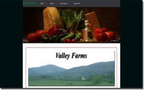 toccoa web designs valley website image